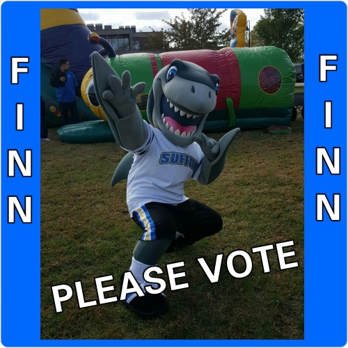 VOTE FOR FINN